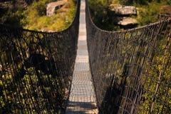 ZBAWCZY siatkarstwo NA stronach zawieszenie most fotografia stock