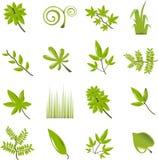 zbiór liści ikony Obraz Stock