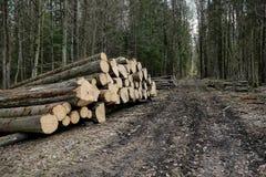 Zbierać loguje się lasowego Lasowego przemysłu zdjęcie royalty free