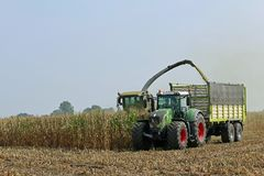 Zbierać kukurudzy z ciągnikiem na holendera gospodarstwie rolnym Fotografia Stock