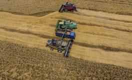 Zbierać pszenicznego żniwiarza Rolnicza maszyny żniwa adra na polu Obrazy Stock