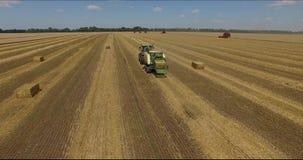 Zbierać pszeniczny Poltava, Ukraina 1 zbiory