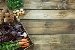 Zbiera świeżych warzywa od marchewki, beetroot, cebula, czosnek na starej drewnianej desce Odgórny widok Uprawiać ogródek kosmos  Zdjęcie Royalty Free