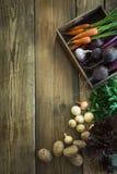 Zbiera świeżych warzywa od marchewki, beetroot, cebula, czosnek na starej drewnianej desce Odgórny widok, wieśniaka styl kosmos k Obrazy Royalty Free