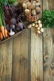 Zbiera świeżych warzywa od marchewki, beetroot, cebula, czosnek na starej drewnianej desce Odgórny widok, wieśniaka styl kosmos k Fotografia Stock
