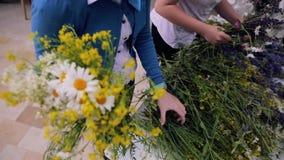 Zbiera bukiet wildflowers zbiory
