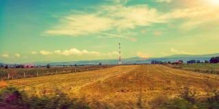 Zbierający pszeniczny pole zdjęcie stock