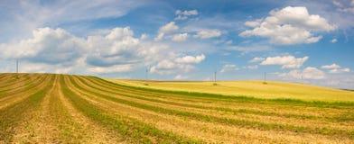 Zbierający pusty pole na wzgórzach zdjęcia royalty free