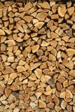 zbierając drewno Zdjęcia Stock