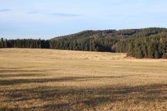 Zbierający pole w jesieni Fotografia Royalty Free