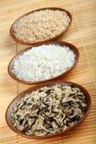 zbioru ryżu Fotografia Stock