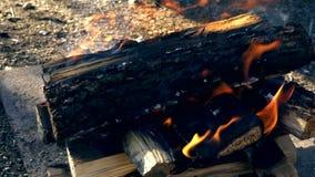 Zbliżenie płonący drewno, ogień zbiory wideo