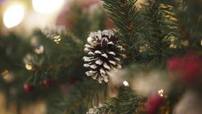Zbliżenie pobielony sosna rożek na sztucznym jedlinowym drzewie zdjęcie wideo