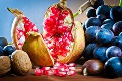 zbliżeń jesienni jedzenia Obraz Royalty Free