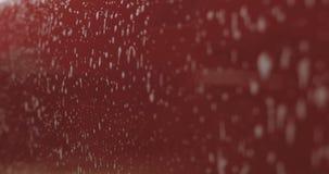 Zbliżenia samochodowego obmycia szamponu czerwony namok obrazy royalty free