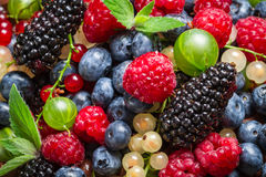 Zbliżenie świeże jagodowe owoc Zdjęcie Royalty Free