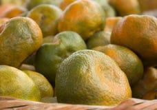 Zbliżenie świezi tangerines Zdjęcie Royalty Free