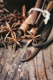 Zbliżenie anyżu ziarno, wanilia i cynamonowi kije na wieśniaku, zalecamy się obraz stock