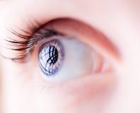 Zbliżenie błękitny żeński oko Obrazy Stock