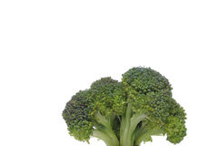 zbliżenie brokułu lubi jak drzewa Fotografia Stock