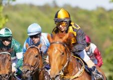 Zbliżenie coloful dżokeje na cwał biegowych koni arabskim stormin Zdjęcia Stock