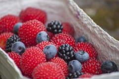 Zbliżenie czerwień balonu jagody, truskawkowe malinowe czarne jagody lub czernicy Obrazy Stock