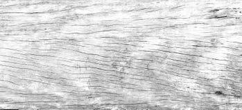 Zbliżenie drewniany pattren miękkiego biel tła Zdjęcie Royalty Free