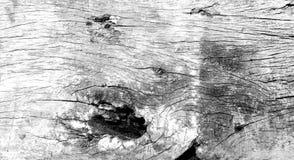 Zbliżenie drewniany pattren miękkiego biel tła Zdjęcie Stock