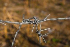 Zbliżenie drut kolczasty na plamy łąki tle Obraz Stock