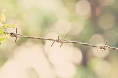 Zbliżenie drut kolczasty, ostrość przy centrum Fotografia Stock