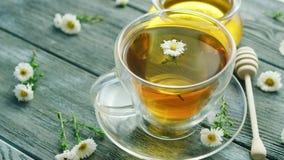 Zbliżenie filiżanka z rumianek herbatą zbiory wideo