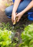 Zbliżenie fotografia młodej kobiety głębienia ziemia w ogródzie z kielnią zdjęcia royalty free
