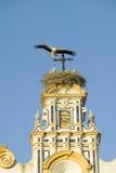 Zbliżenie gniazdować Europejskich bociany na biały katedry wierza z pięknym światłem słonecznym w wiosce Południowy Hiszpania z a Obrazy Stock