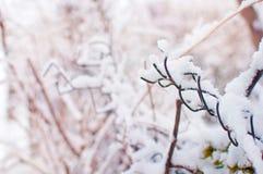 Zbliżenie koślawy kawałek siatki ogrodzenie Zdjęcia Royalty Free