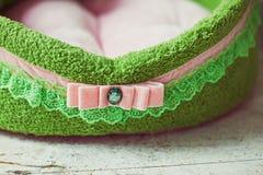 Zbliżenie koronka zielona zwierzę domowe materac Obrazy Stock