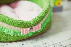 Zbliżenie koronka zielona zwierzę domowe materac Zdjęcia Stock