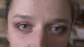 Zbliżenie krótkopęd patrzeje prosto przy kamerą dorosła atrakcyjna caucasian żeńska twarz z oczami zdjęcie wideo