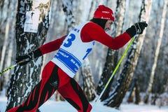 Zbliżenie męska narciarka w średnim wieku klasyka styl w zim drewnach na sportach ściga się Zdjęcie Royalty Free