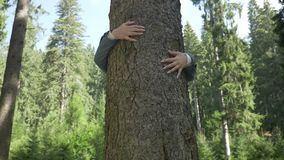 Zbliżenie młoda ekolog kobieta ściska drzewa dziękuje relaksować w lasowej naturze - zdjęcie wideo