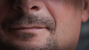 Zbliżenie Młody samiec Lips.RAW wideo 2 zbiory