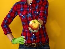 Zbliżenie na kobieta rolniku na kolorze żółtym daje jabłka Zdjęcia Royalty Free