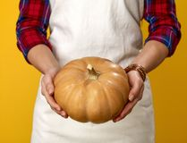 Zbliżenie na młoda kobieta kucharzie odizolowywającym na kolorze żółtym pokazuje bani Zdjęcie Royalty Free