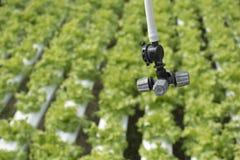 Zbliżenie na rolnictwa kropidła głowy wody gospodarstwie rolnym Fotografia Stock