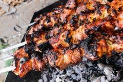 Zbliżenie niektóre mięs skewers piec na grillu w grillu obrazy royalty free