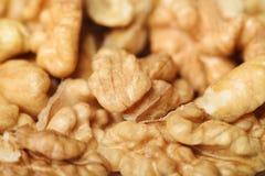 Zbliżenie Nutmeat Zdjęcie Stock