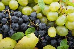 Zbliżenie owoc winogrona Zdjęcia Stock