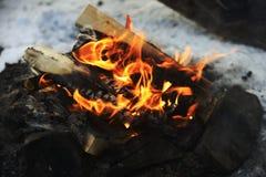 Zbliżenie płonący drewno w ogieniu Obraz Royalty Free
