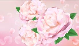 Zbliżenie peonia kwiaty ilustracji