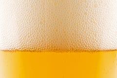 zbliżenie piwny pół kwarty Zdjęcia Stock