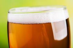Zbliżenie piwo Fotografia Royalty Free